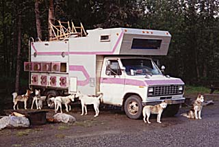 Seppalas en route to the Yukon in Carolyn Ritter's dog truck, 1993