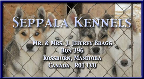 Seppala Kennels -  Mr & Mrs J. Jeffrey Bragg -  Box 396 -  Rossburn, MB -  Canada R0J 1V0